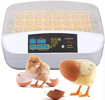 XuanYue Incubatrice Uovo Automatica Incubatrice Digitale 32 Uovo Intelligente Pollo Uovo Hatcher per Pollo Anatre Oca Pollame Piccione Quaglia