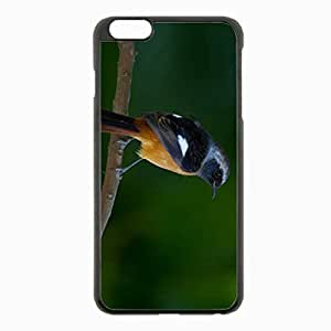 iPhone 6 Plus Black Hardshell Case 5.5inch - branch feathers background close up Desin Images Protector Back Cover