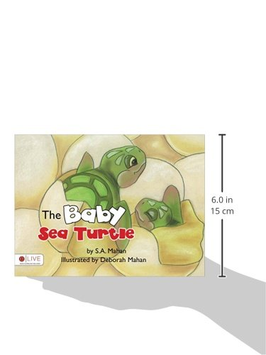 The Baby Sea Turtle: Amazon.es: S.A. Mahan: Libros en ...