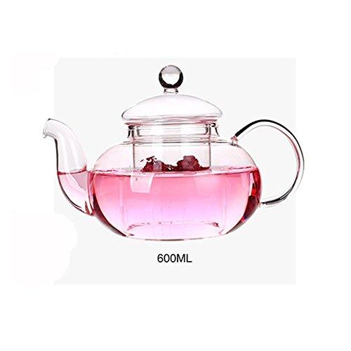 DecentGadget Glass Filtering Tea Maker A High Heat Resistant Borosilicate Glass Teapot 600ml (glass teapot) -