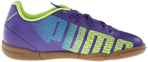 c8eed81dd08 PUMA Evospeed 5.3 Indoor JR Soccer Shoe