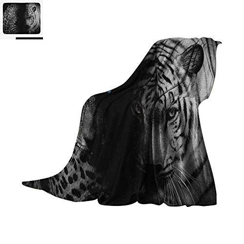 - Black and White Warm Microfiber All Season Blanket Leopards with Blue Eyes Aggressive Powerful Wildcat Profile Print Summer Quilt Comforter 50