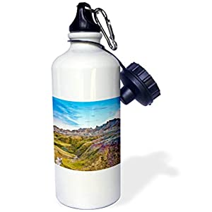 3dRose Danita Delimont - Mountains - Colored Hills And Valleys, Badlands NP, South Dakota, Usa - 21 oz Sports Water Bottle (wb_279431_1)