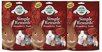 Oxbow SIMPLE REWARDS Treats Rabbit Guinea Pig Chinchilla STRAWBERRY .5 oz 3 PACK ()