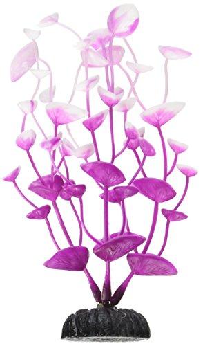 Weco Dream Series Tulips Ornament, 6