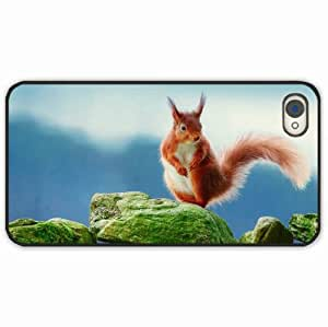 iPhone 4 4S Black Hardshell Case squirrel rocks moss Black Desin Images Protector Back Cover