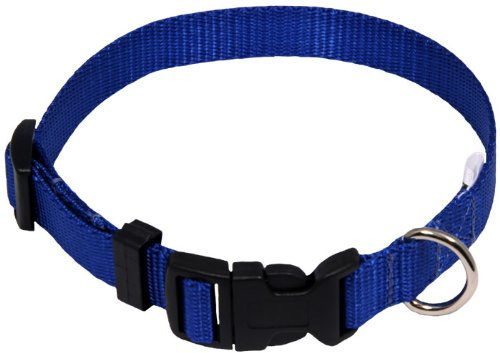 Royal Blue Dog Collar - 6