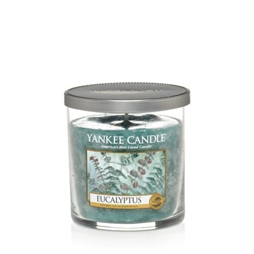 AUTHENTIC Yankee Candle Eucalyptus 22-Ounce Country