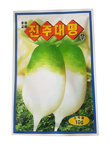 EmcoDea Radish Seeds Plant. Easily Grow Plants with Excellent Varieties Korea Seed (10g/1Pack) ()
