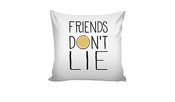 Amigos don t Lie extraño cosas inspirado - 16 x 16 pulgadas decorativo Cojín cuadrado Funda de almohada: Amazon.es: Hogar