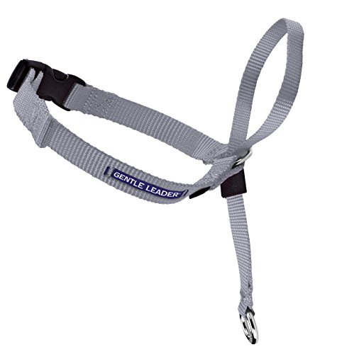 PetSafe Gentle Leader Head Collar with Training DVD, SMALL UP TO 25 LBS., SILVER