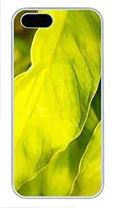 Case For Ipod Touch 5 Cover Nature sunshine lime PC Custom Case For Ipod Touch 5 Cover Cover White