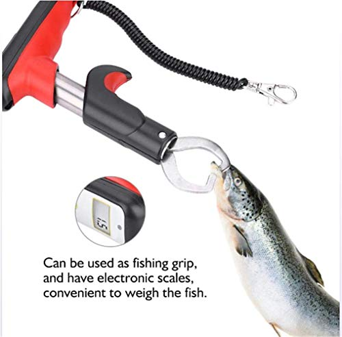 (Electronic Weighing Fish, Stainless Steel Fish Mouth Gun Type Portable Fish Mouth Clip and LED Digital Scale)
