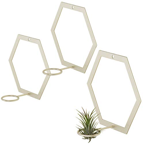 MyGift Wall-Mounted Hexagonal Gold-Tone Metal Air Plant Holders, Set of 3