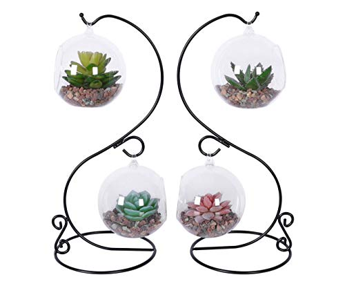 TQVAI 2 Pack Glass Air Plant Vase Terrarium Orbs with S Metal Stand, Black (Vase Black Stand)