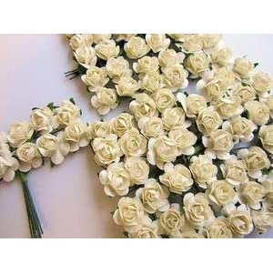 """144pc Mulberry Paper 1/2"""" Rose Flower with Wire Stem (Ivory) 21"""