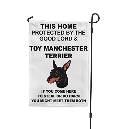 Home protected Lord TOY MANCHESTER TERRIER DOG Meet Both Yar