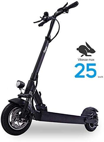 BEEPER MAX Scooter Patinete eléctrico con Alarma 10 Pulgadas 500W ...
