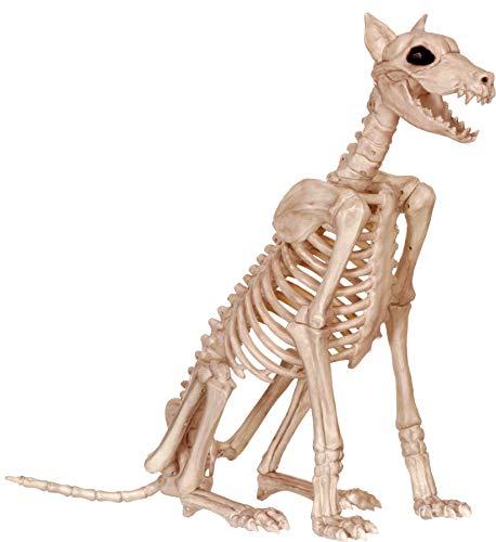 Small Plastic Skeletons (Crazy Bonez Skeleton Dog - Badger)