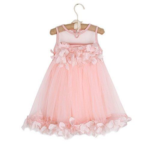 1-6T Kids Girls Mesh Tulle Skirt Dress for Birthday Flower Girl Special Occasion (Fairy Dress For 1 Year Baby Girl)
