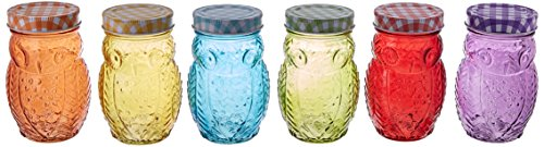 Style Setter 206242-6GB Owl Colors Jars with Lids (Set of 6), (Owl Glasses)
