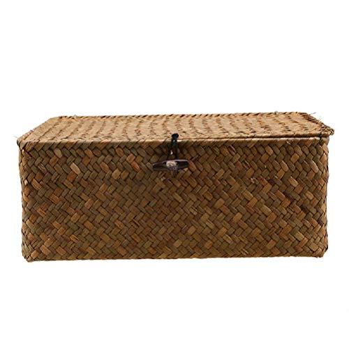 Seagrass Storage Boxes - 9