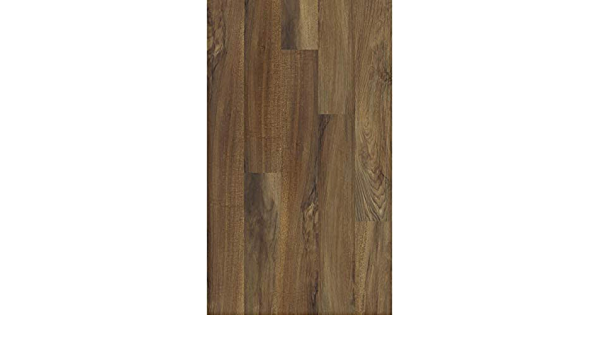 Shaw Industries 0545V 00802 Valore Plank Color 802