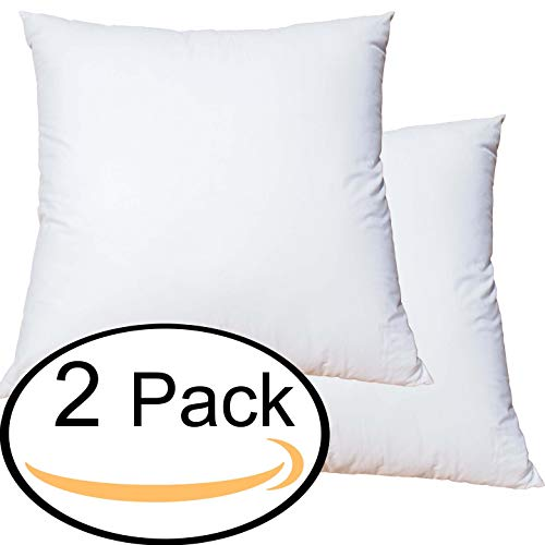 - Featherlite Quill Free Down Like Feather Pillow Form Insert for Sham (28 Inch by 28 Inch Set of 2)
