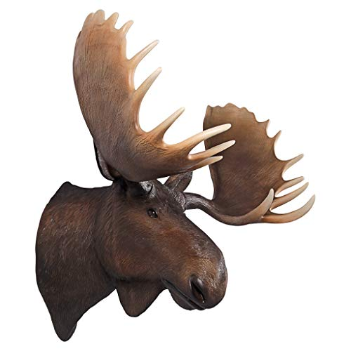 Design Toscano North American Majestic Moose Trophy Head Wall Sculpture, Full Color (Head Moose Trophy)