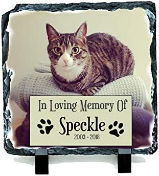 Mrs Bees Emporium Placas conmemorativas para Gatos con Texto en inglés: Amazon.es: Productos para mascotas