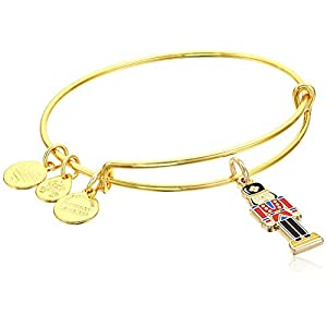 Alex and Ani Women's Color Infusion – Nutcracker Bangle