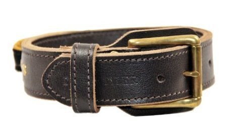 Dean and Tyler  SIMPLICITY , Leather Dog Collar with Solid Brass Hardware Brown Size 61cm by 4cm Fits Neck 56cm to 66cm