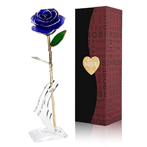 Love Forever Long Stem Gold Foil Trim Red Rose Flower with Transparent Stand, Best Gift for Valentines Day, Mothers Day, Anniversary, Birthday Gift, Treating Yourself, Galentine's Day (BLUE)