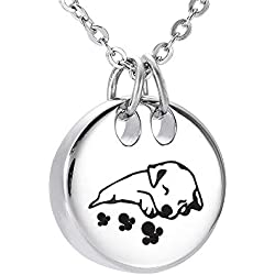 Pet Cremation Necklace for Ashes Urns Jewelry Stainless Steel Cute Dog Cat Keepsake Memorial Urn Pendant Locket