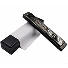 Harmonica Titanium Black Wire Drawing Stainless Steel Plate Hole Sound 24 Hole Polyphony C Tune Adult Student Playing Beginner Entry Mini Harmonica Student Classroom Instrument (Bright black)