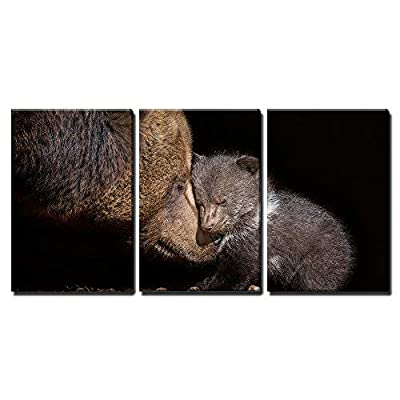 Snuggling Mother And Baby Brown Bear - 3 Panel Canvas Art
