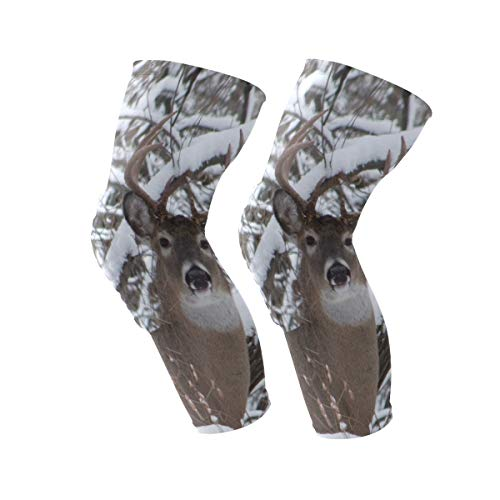 Knee Sleeve Whitetail Iowa Buck Deer Full Leg Brace Compression Long Sleeves Pant Running, Jogging, Sports, Crossfit, Basketball, Joint Pain Relief, Men and Women 1 Pair -