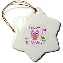 orn_109043_1 Florene Childrens Art II - Owl Birthday For Girls 1st Birthday - Ornaments - 3 inch Snowflake Porcelain Ornament
