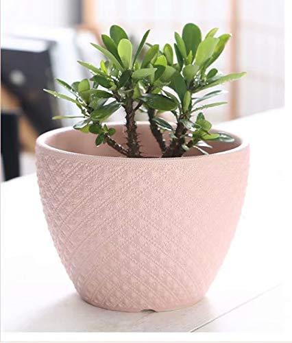 - Pink Large Ceramic Flower Pot Green Plant Container, Bonsai Container Cactus, Flower Pot Garden Plant Vase Table Flower Decoration
