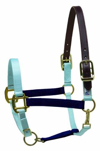 Perri's Pony Two Tone Nylon Safety Halter, Navy/Sky Blue