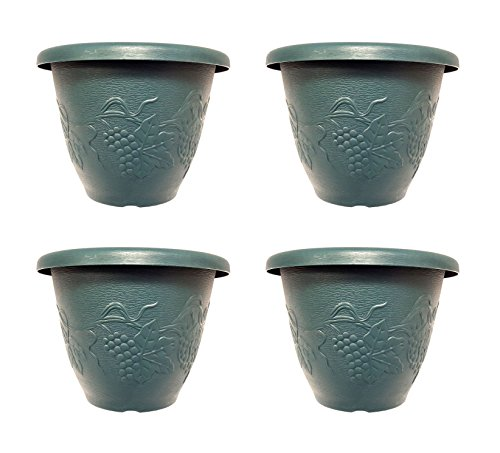 Set of 3 Green Round Grapevine Decorative 10