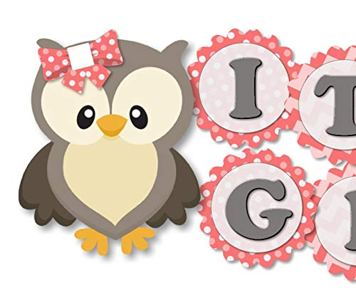 Owl Baby Shower Banner Party Theme Decoration for Baby Girl