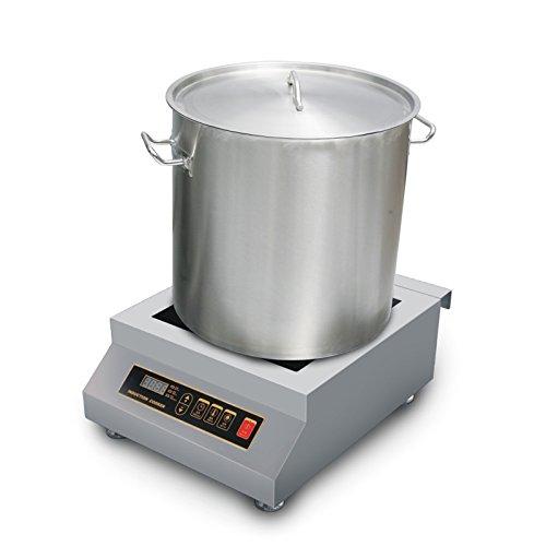 Magnetic Induction Stove ~ Watt countertop commercial induction cooktop burner