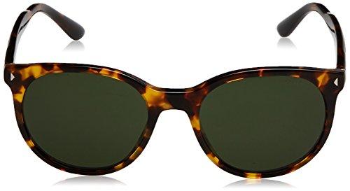 Prada lunettes de soleil rondes classiques en vert de la Havane PR 06TS VAU1I0 53 Havana