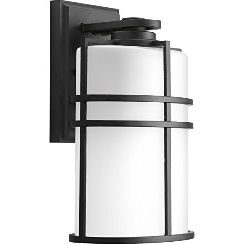 Progress Lighting P6063-31 1 LT Wall Lantern with Etched Glass, 8