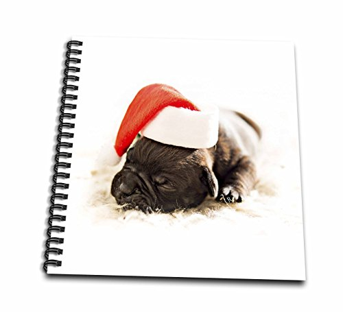 3dRose Sandy Mertens Christmas Animals - Sleeping Black Pug Puppy Wearing Santa Hat with White Background - Drawing Book 8 x 8 inch (db_269526_1)