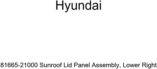 Lower Right Genuine Hyundai 81665-21000 Sunroof Lid Panel Assembly