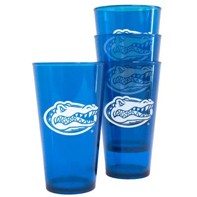 Boelter Brands 4245101025 Florida Gators Plastic Pint Glass Set (Gator Beer Glasses)