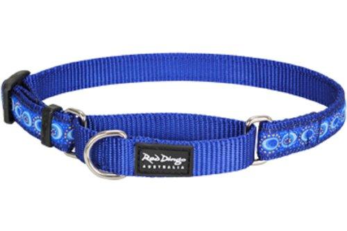 (Red Dingo Designer Martingale Dog Collar, Small, Cosmos Dark Blue)