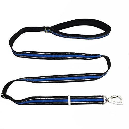 Reflektierende Nylon Hundeleine Trainingsleine Verstellbare Robuste Führleine Welpenleine Übungsleine für kleine mittlere große Hunde Blau
